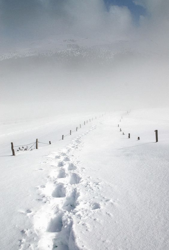 """.Only My Lone Footprints In The Snow,,Where I Am You Will NEVER Know,,,,Hahahahahahahahaha,You Can,t Find Me,,I Sing. Not To Worry,,,,It,s Not Cold Unless You Want It To Be,,That,s How Things Are In """"HEAVEN"""",,You Can Have Things Anyway That PLEASES You!!!"""