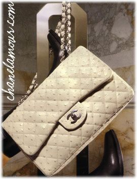 Ostrich leather Chanel 2.55