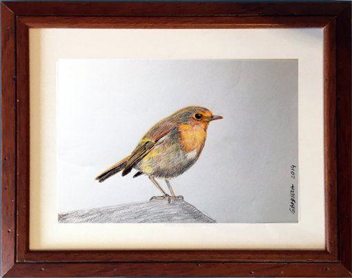 Tekening met lijst  vogel roodborstje getekend met door RingDesignNL