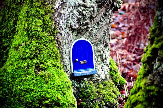 tiny little fairy door