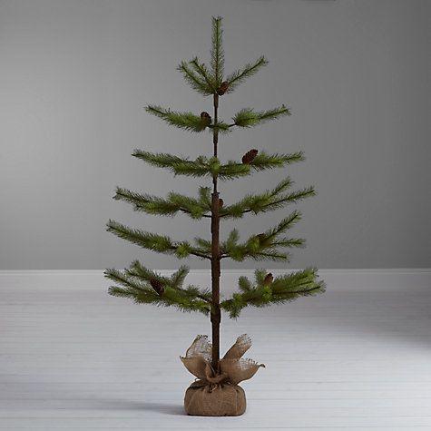 John lewis, Pine and Christmas trees on Pinterest