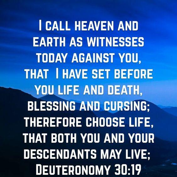 Deuteronomy 30:19