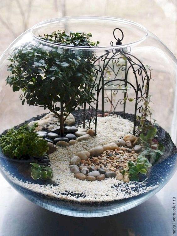 bonsai trees inside a fishbowl as a planter #gardenIdeas #garden #gardening #plants #homeDecor #indoor