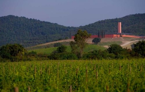 винодельня кантина Италия