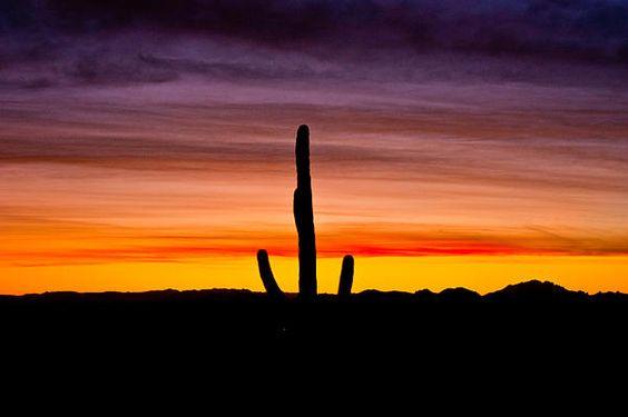 Desert Sunrise 8
