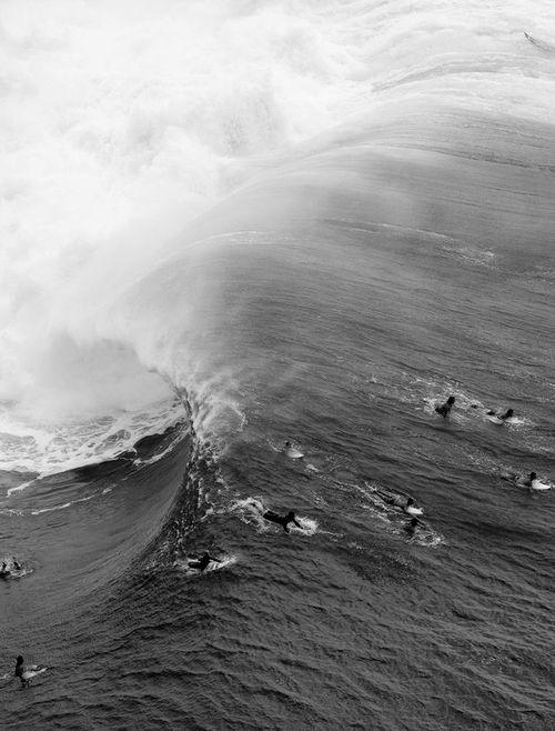 photo de surf 18746