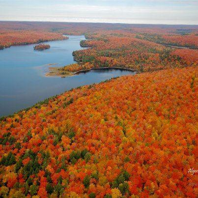 Algonquin park , Ontario Canada:
