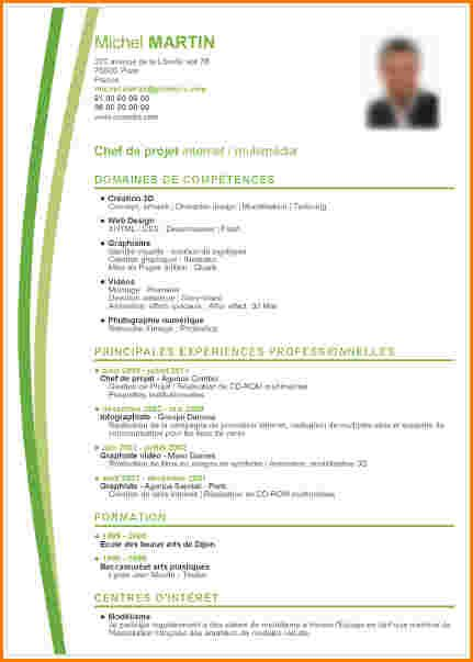 Exemple De Cv A Telecharger Gratuitement Exemple Cv Cv Gratuit Modele Cv