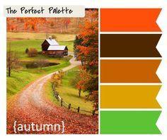 Combo 06 - Opção de paleta de cor para combinar com sofá marrom e berço de madeira