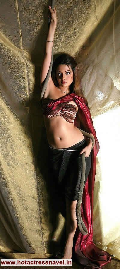 www.hotactressnavel.in - Navel, Cleavage, Thighs, Legs, Sari, Saree ...