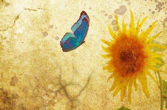 Du bist es wert, einmal am Tag das Gefühl zu haben, dass alles friedlich ist. Es lohnt sich, für dieses Gefühl zu kämpfen.