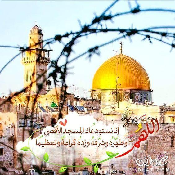 صور القدس الجريحة 2021 صور المسجد الاقصي رمزيات عن القدس خلفيات عن المسجد الاقص Islam My Land Good To Know