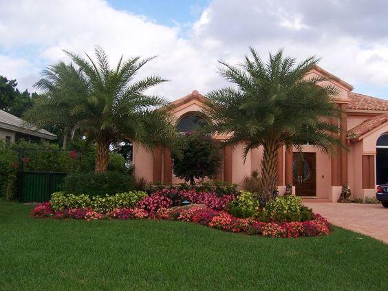 Paesaggio tropicale idee per progettazione di giardini for Tropical front garden designs