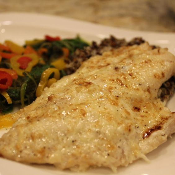 Parmesan Grouper Recipe with grouper fillets, juice, grating cheese, melted butter, mayonnaise, salt, pepper