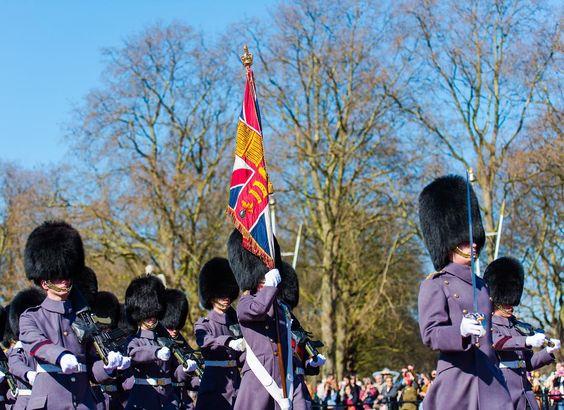 #changeofguards #travelphotography #london #nikon #nikonphotography #nikontop #hcmr #thebritisharmy #buckinghampalace #uk #england #palace #royal #royalguards #instatravel #marchingguard #flag #instaflag #windsorcastle by rayeophotography