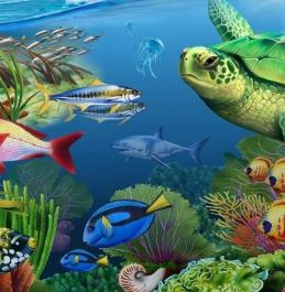 Realistic Painted Illustrations Of Animals Plants And Flowers Lori Anzalone Colorful Animals Animals Ocean Animals