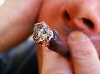 Droga: uso di cannabis aumenta rischio schizofrenia