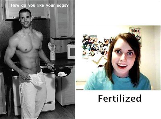 Fried Or Fertilized Gif