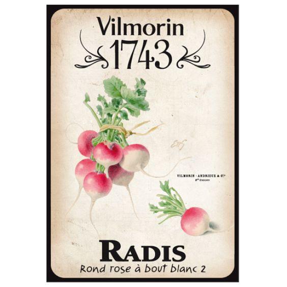 Vilmorin 1743 radis sachets de graines pinterest for Vilmorin graines