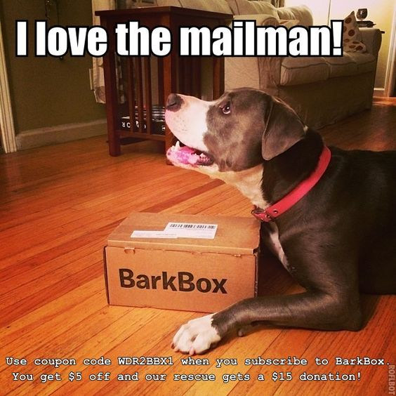 Get $5 off any BarkBox subscription and support Wagging Dog Rescue! For every coupon used on BarkBox.com, our rescue will get a $15 donation from BarkBox. Be sure to use our special promo code: WDR2BBX1. Help us meet our goal of 100 subscriptions and we will raise $1,500! http://www.barkbox.com.