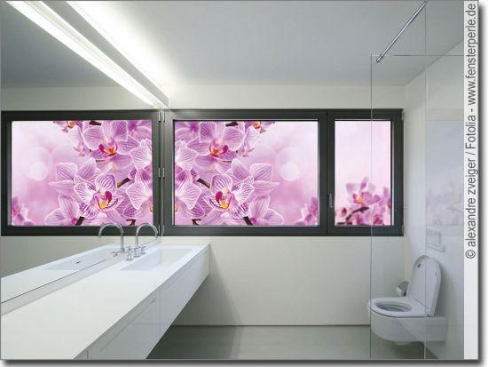 Glasbild Pink Orchidee Glasbilder Orchideen Und Pink