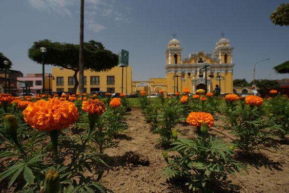 Nuestra Catedral en la Plaza de Armas