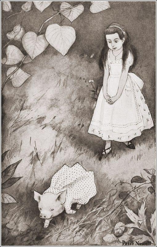 Иллюстратор Peter Newell Сказка Л.Кэрролла «Алиса в стране чудес» Автор Льюис Кэрролл Страна США Год издания 1901 Издательство Harper & Brothers: