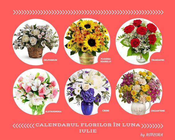 Calendarul florilor din luna iulie