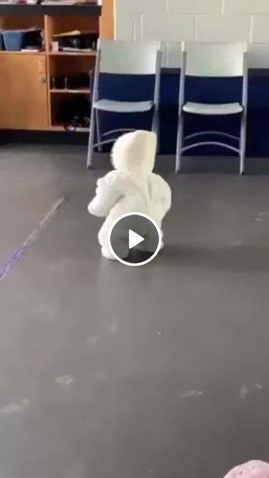 Criançinha fofa até na hora de cair.