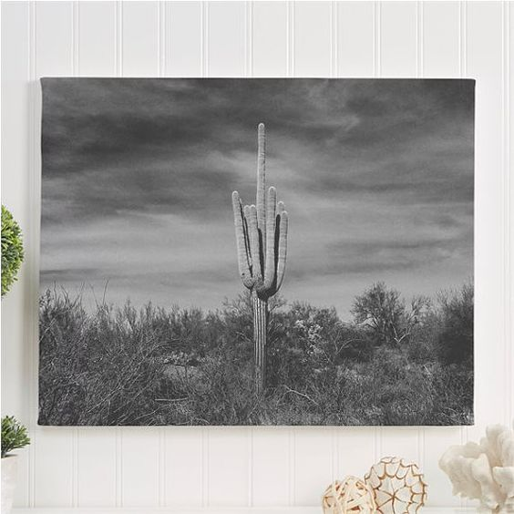 "cactus canvas gallery wrap / black and white nature wall art / minimal desert landscape canvas /  16x20 24x36 large canvas / ""lone Saguaro"""