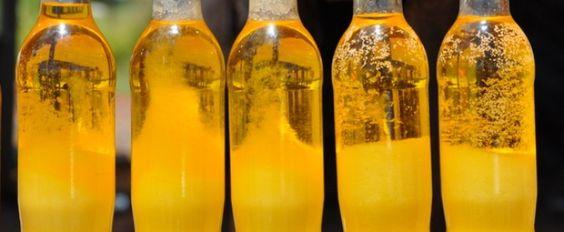 Receita de Manteiga de garrafa