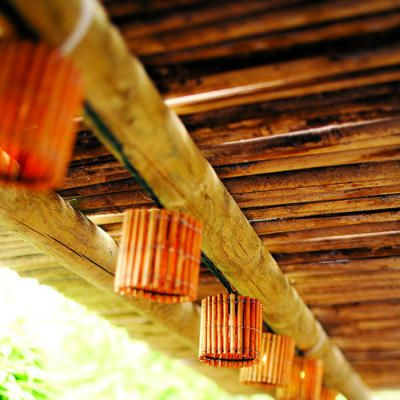 Tropical Lighting - In keeping with his rear deck's tropical feel, Joe Rivers Altieri strung Christmas lights in bamboo covers from Target under the bamboo awning.