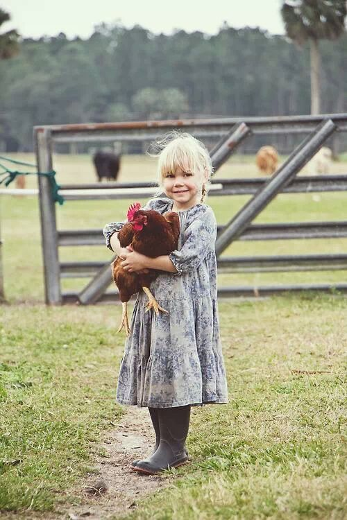 Girl picking up a chicken on the farm****FOLLOW OUR UNIQUE GARDENING BOARDS AT www.pinterest.com/earthwormtec*****FOLLOW us on www.facebook.com/earthwormtec & www.google.com/+earthwormtechnologies for great organic gardening tips #children #garden #chicken