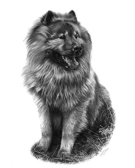 50 Wonderful Dog Charcoal Drawings Dog Print Art Dog Art Pet Portraits