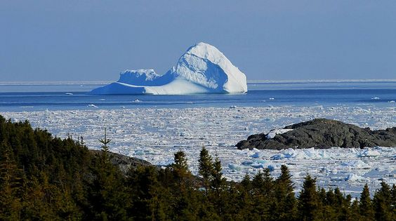 Iceberg in May