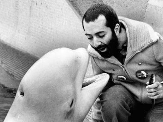 Kavna the whale who inspired the song baby beluga has passed away...