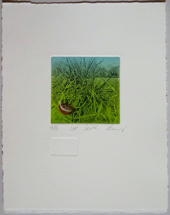 lost-lark.jpg (1264×1600)