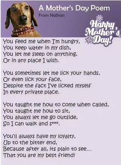 Mother's Day Poem for dog moms:
