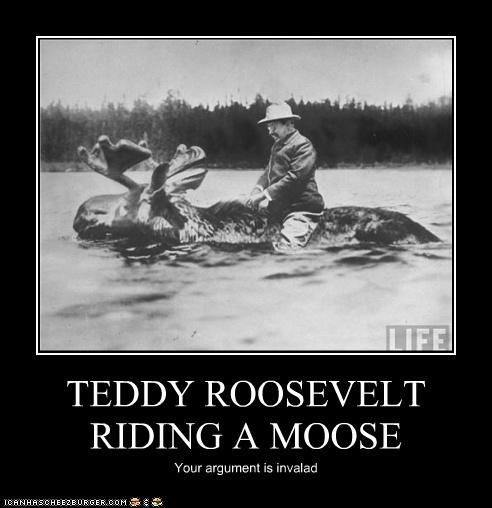 Teddy Roosevelt riding a moose!