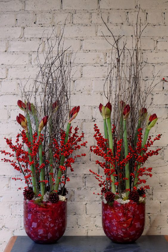Although we 39 ve been doing a lot of christmas decorating for Amaryllis christmas decoration
