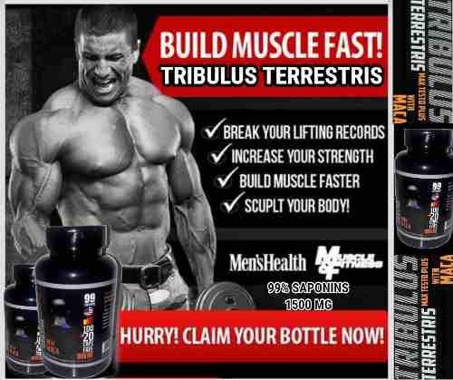 tribulus terrestris effets secondaires