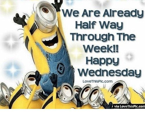 Happy Wednesday Peeps Have A Wonderful Day Everyone Funny Wednesday Quotes Happy Wednesday Quotes Wednesday Quotes
