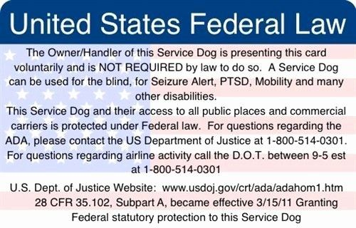 Service Dog Card Template Best Of Ada Federal Law Information Card Service Dogs Dog Cards Card Template