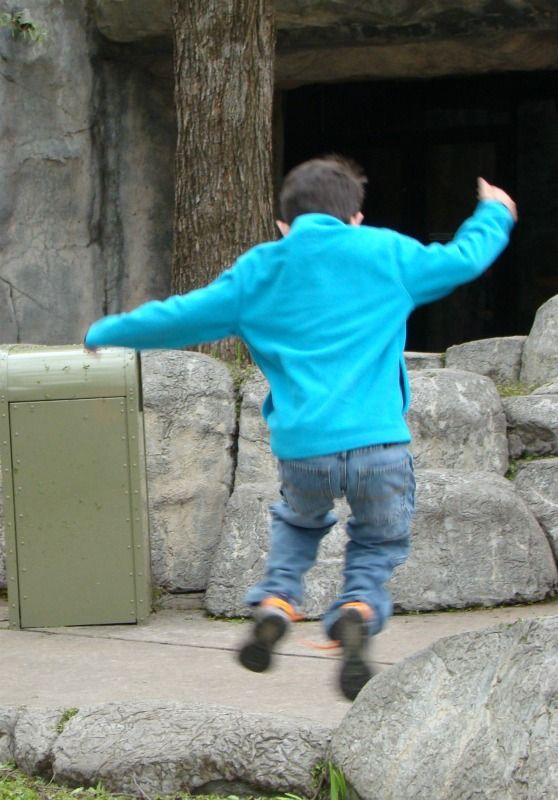 Jumping Blue Zoo Boy: