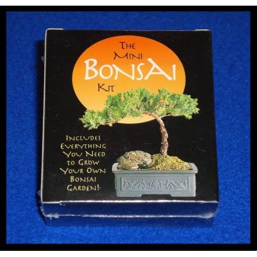 "BRAND NEW MINI BONSAI KIT ""GROW YOUR OWN BONSAI GARDEN""  SEALED JAPANESE ART - $2.50"