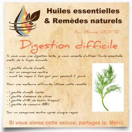 huile essentielle aneth digestion lente