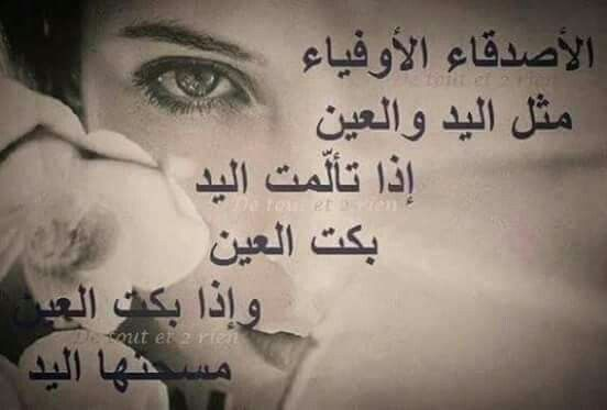 Pin By Hamo Beyrouty On Friendship Fake Girls Friends Forever Bard