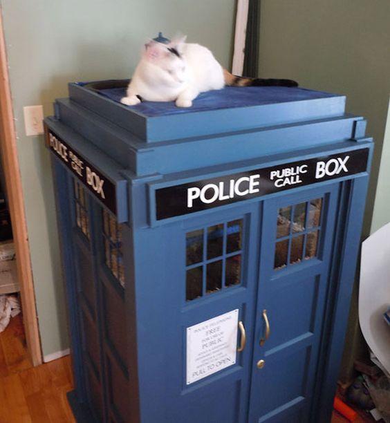 Le Tardis de Doctor Who pour … Chat !   GeeKNewZ.fr