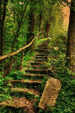 escalier naturel