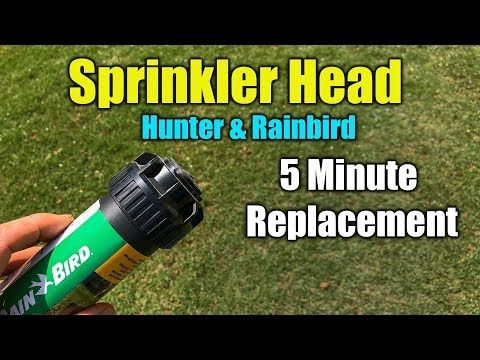 Replace Sprinkler Head Rainbird And Hunter Youtube Sprinkler Heads Sprinkler Hunter Sprinkler Heads